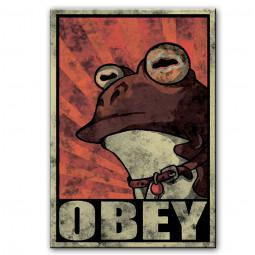 OBEY жаба